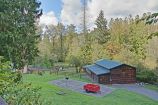 26112 NE 17th St  , Redmond, WA 98053 (#702498) :: Exclusive Home Realty