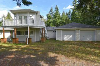 8282  Portal Wy  , Blaine, WA 98230 (#703094) :: Home4investment Real Estate Team