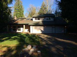 21002 SE 256th  , Maple Valley, WA 98038 (#715772) :: Exclusive Home Realty
