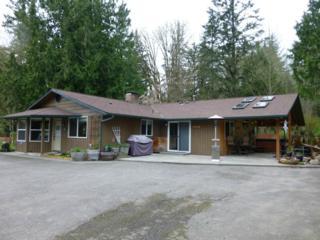5269  Wildlife Acres Lane  , Sedro Woolley, WA 98284 (#717818) :: Home4investment Real Estate Team