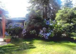 550 S Beach Rd  , Point Roberts, WA 98281 (#723171) :: Home4investment Real Estate Team