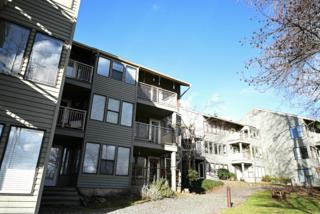3700  Alabama St  114, Bellingham, WA 98229 (#732610) :: Home4investment Real Estate Team