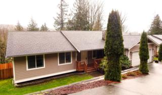 344 W Alder Dr  , Sedro Woolley, WA 98284 (#741238) :: Home4investment Real Estate Team