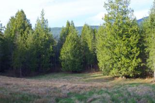 20696  Parson Creek Rd  , Sedro Woolley, WA 98284 (#759515) :: Home4investment Real Estate Team