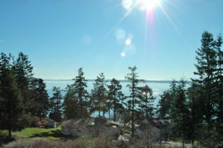 1242  Rosemont Dr  , Oak Harbor, WA 98277 (#760202) :: Keller Williams Realty Greater Seattle