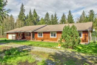 30171  South Skagit Hwy  , Sedro Woolley, WA 98284 (#766614) :: Home4investment Real Estate Team