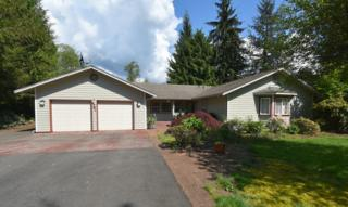 4791  Ivan Lane  , Sedro Woolley, WA 98284 (#790155) :: Home4investment Real Estate Team