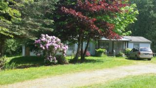 20222  Parson Creek Rd  , Sedro Woolley, WA 98284 (#790170) :: Home4investment Real Estate Team