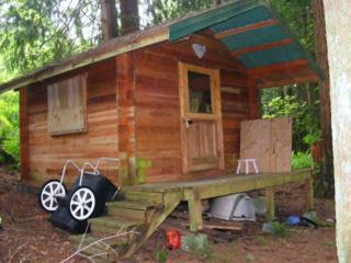 0  Prairie Lane  , Sedro Woolley, WA 98284 (#790313) :: Home4investment Real Estate Team
