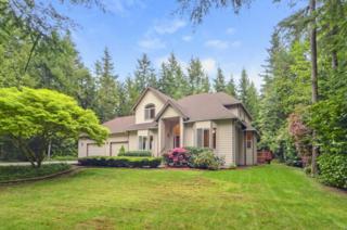 24392  Gracey Trail Lane NE , Poulsbo, WA 98370 (#791501) :: Mike & Sandi Nelson Real Estate