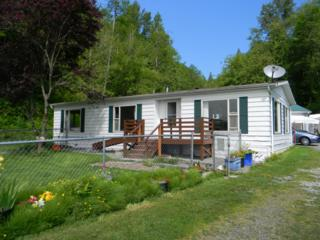 30081  State Route 20  , Sedro Woolley, WA 98284 (#791515) :: Home4investment Real Estate Team