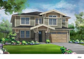 4681  234th Place SE Lot16, Sammamish, WA 98075 (#691922) :: Exclusive Home Realty