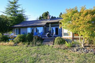 5513  Salish Rd  , Birch Bay, WA 98230 (#695034) :: Home4investment Real Estate Team