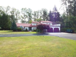 10653  Sterling Rd  , Sedro Woolley, WA 98284 (#698352) :: Home4investment Real Estate Team