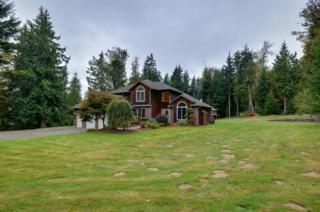 424  169th Ave NE , Snohomish, WA 98290 (#704217) :: The Key Team