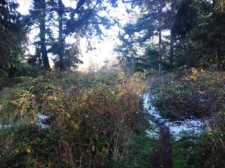 0  Parcel 948302812  , Port Townsend, WA 98368 (#723986) :: Keller Williams Realty Greater Seattle