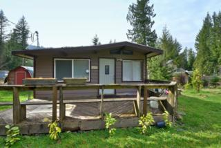 6260  Music Place  , Maple Falls, WA 98266 (#763565) :: Home4investment Real Estate Team