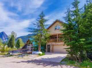 141  Kearny Dr  , Snoqualmie Pass, WA 98068 (#778312) :: FreeWashingtonSearch.com