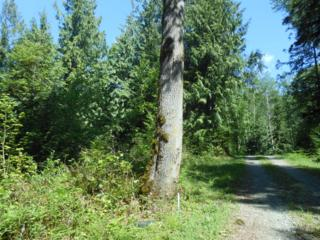0-NHN  Prevedal Rd  , Sedro Woolley, WA 98284 (#781466) :: Home4investment Real Estate Team