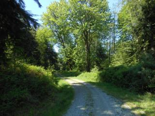 0-NHN  Prevedal Rd  , Sedro Woolley, WA 98284 (#781497) :: Home4investment Real Estate Team