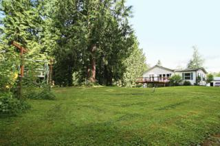 19343  Wildes Creek Lane  , Burlington, WA 98233 (#615168) :: Home4investment Real Estate Team