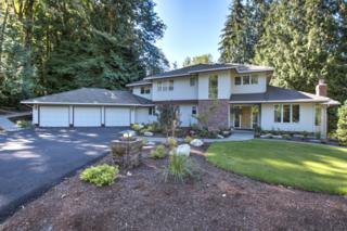 14129  229th Dr SE , Issaquah, WA 98027 (#694095) :: Exclusive Home Realty