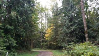 343-xx SE 39th Place  , Fall City, WA 98024 (#707509) :: Exclusive Home Realty