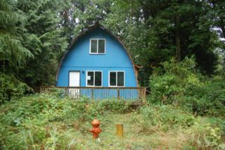 1550  Mckenzie Wy  , Point Roberts, WA 98281 (#710629) :: Home4investment Real Estate Team