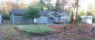 4718  Lois Lane  , Sedro Woolley, WA 98284 (#725213) :: Home4investment Real Estate Team