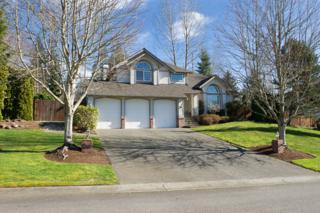 14232  274th Place NE , Duvall, WA 98019 (#742201) :: Exclusive Home Realty