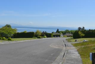 5-Lot  Whalen Dr  , Point Roberts, WA 98281 (#778439) :: Home4investment Real Estate Team