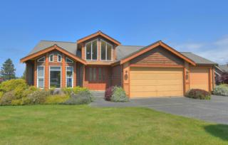 5638  Whitehorn Wy  , Blaine, WA 98230 (#786571) :: Home4investment Real Estate Team