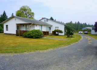 9425  249th St NE , Arlington, WA 98223 (#669075) :: Home4investment Real Estate Team