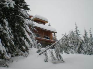 160  Kearny Dr  , Snoqualmie Pass, WA 98068 (#705908) :: FreeWashingtonSearch.com
