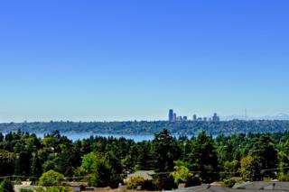 9357  Hilltop Rd  , Bellevue, WA 98004 (#723083) :: Exclusive Home Realty