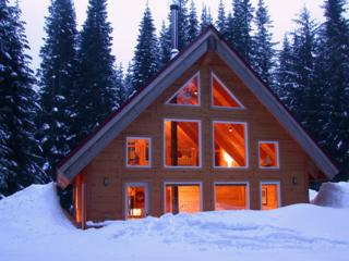 42  Gold Creek Ln  , Snoqualmie Pass, WA 98068 (#739026) :: FreeWashingtonSearch.com