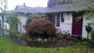 4417 S 272 St  , Kent, WA 98032 (#706356) :: Home4investment Real Estate Team
