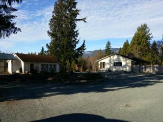 5168  State Route 9  , Sedro Woolley, WA 98284 (#730306) :: Home4investment Real Estate Team