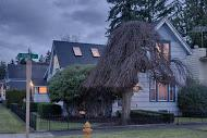 429  Union Ave  , Snohomish, WA 98290 (#725770) :: Home4investment Real Estate Team