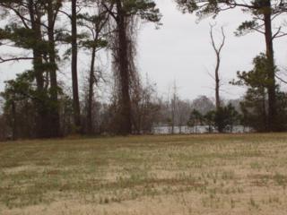 104  Vineyard Drive  , Elizabeth City, NC 27909 (MLS #87356) :: Outer Banks Home Search