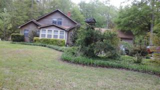 123  Marshal Grandy Lane  , Poplar Branch, NC 27965 (MLS #87832) :: Outer Banks Home Search
