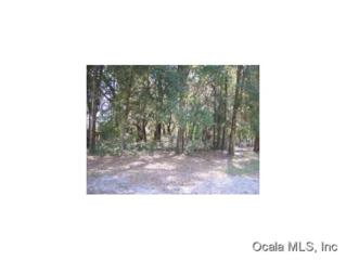0 SW 114 LN  , Dunnellon, FL 34432 (MLS #404004) :: Realty Executives Mid Florida