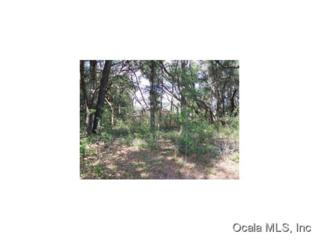 0 SW 115 PL  , Dunnellon, FL 34432 (MLS #404005) :: Realty Executives Mid Florida