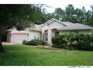 8681 SW 197 COURT RD  , Dunnellon, FL 34432 (MLS #410184) :: Realty Executives Mid Florida