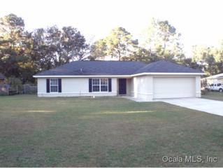 42  Redwood Rd  , Ocala, FL 34472 (MLS #416740) :: Realty Executives Mid Florida