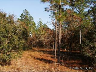 0 SW Timberlake Rd  , Dunnellon, FL 34431 (MLS #417201) :: Realty Executives Mid Florida
