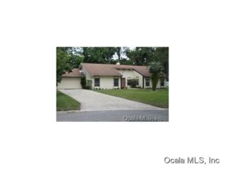 3353 SE 2 CT  , Ocala, FL 34471 (MLS #417216) :: Realty Executives Mid Florida