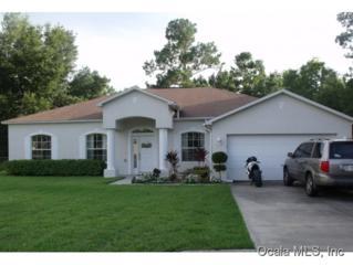14  Hemlock Radial Cir  , Ocala, FL 34472 (MLS #418362) :: Realty Executives Mid Florida