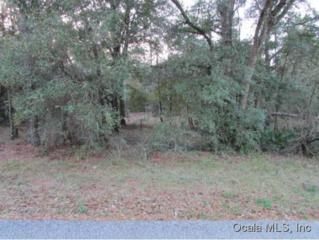 0000 SW 73RD LP  , Dunnellon, FL 34432 (MLS #419041) :: Realty Executives Mid Florida