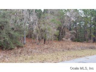 LOT 40 SW Admiral Landing  , Dunnellon, FL 34431 (MLS #420588) :: Realty Executives Mid Florida